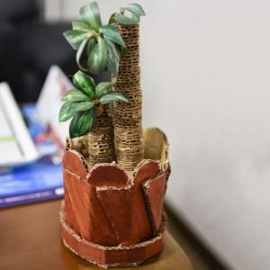 ダンボール製観葉植物