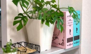 大阪府大東市の京阪紙工では強化ダンボールの特性を生かした一般向け製品を開発中です